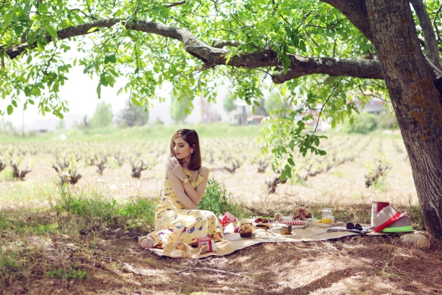 picnic (10)